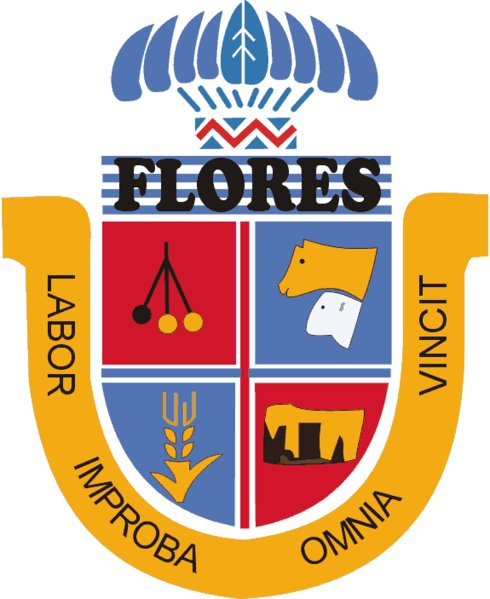 Department Of Flores