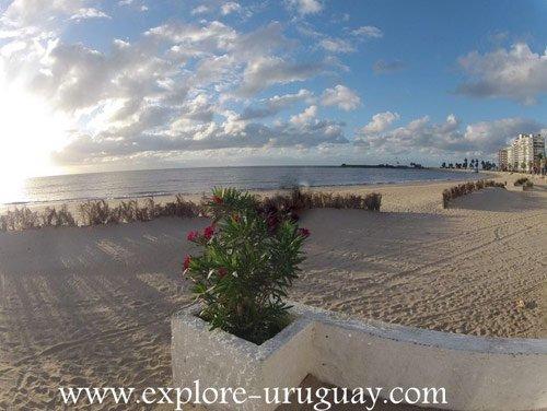 Pocitos Beach Uruguay in Montevideo
