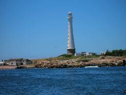 Isla de Lobos Punta del Este Uruguay