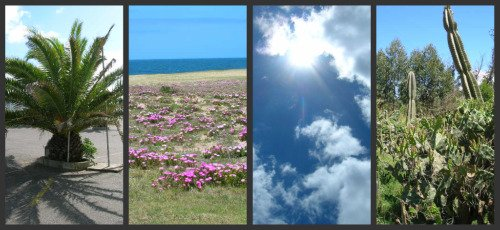 Uruguay Climate